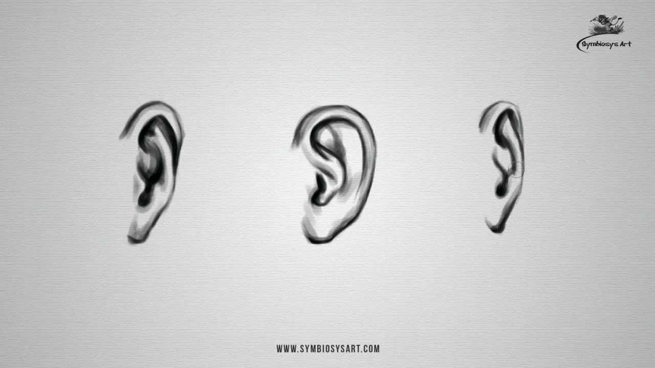 How To Draw An Ear Youtube