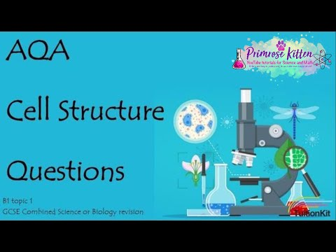 CELL STRUCTURE. AQA B1-Topic 1 Quick Fire Questions. 9-1  GCSE Biology or combined science revision