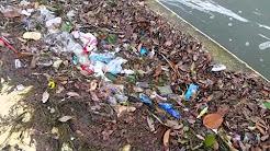 Trash in Corpus Christi Bay After a Rain