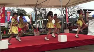 水戸ご当地アイドル(仮) 水戸ご当地アイドル(仮) 検索動画 30
