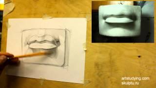 Губы Давида (1). Обучение рисунку. Портрет. 26 серия