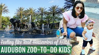 AUDUBON ZOO NEW ORLEANS// REALHOUSEWIVES // GIVEAWAY