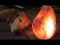 Chakra Likes the New Salt Lamp!