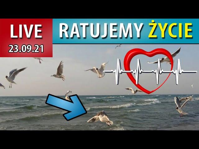 13 minuta Mistrzostw Polski - jedno życie uratowane...