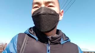 김해 한림정 폐차장 코로나19