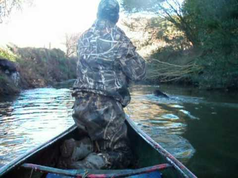 Duck Hunting From Canoe With Cesky Fousek 2009 Youtube