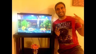 Mission Aquarium - | Lalit Shokeen Vlogs |