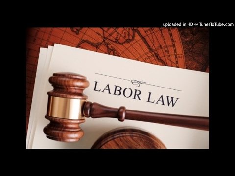 Labour Law - The employment contract- MRL 3702 p8 - p19