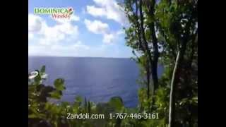 Hotels In Dominica -  Beautiful Zandoli Inn