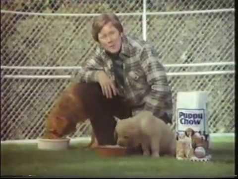 Purina Puppy Chow ad, 1980