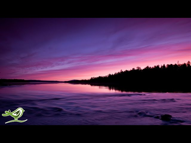 Relaxing Sleep Music: Deep Sleeping Music, Relaxing Music, Fall Asleep Fast, Meditation Music ★114