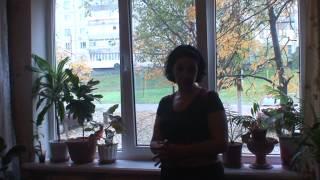 видео Где заказать окна