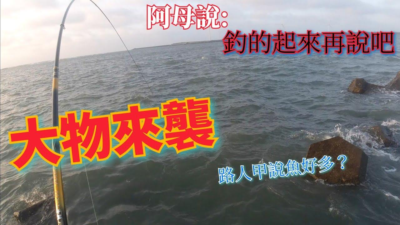 【阿母的烏魚】鹿港北堤釣到路人覺得這裡魚很多的樣子?