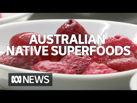Packed Full Of Antioxidants, Australian Native Foods Are Going Global | ABC News