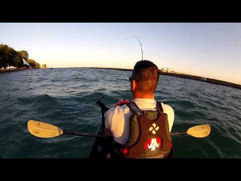 Fishing For King Salmon On A Kayak (Waukegan Harbor)