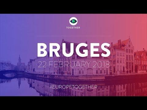 Democratic participation in the upcoming 2019 European Parliament elections - EN