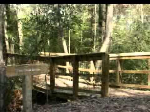 Alabama Nature Center 2011