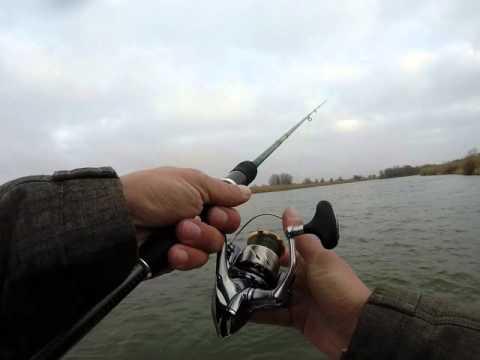 Небольшой эпизод - 15 минут рыбалки на Нижней Волге