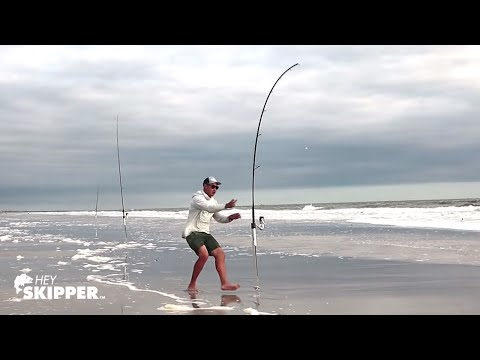 SCAVANGED BAIT Catches EVERYTHING! Beach Fishing W/ Free Bait