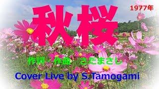 秋桜(コスモス)は、作詞・作曲が さだまさしさんで1977年に発売された山口百恵さんの19枚目のシングル。郷愁漂う心にしみる楽曲で大ヒットして日本の歌百選にも選ばれ ...