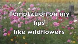 Play Wildflowers