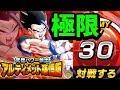 【ドッカンバトル】アルティメット悟飯の極限Zバトルに挑戦!【Dragon Ball Z Dokkan…