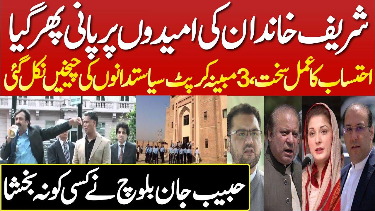 Sharif Family Ki Umeedo Pe Paani Phir    Gya Habib Jan Baloch Ki Video