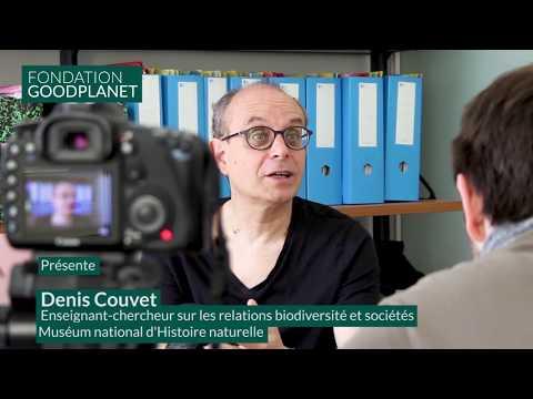 Interview de Denis Couvet, professeur au Muséum national d'Histoire Naturelle