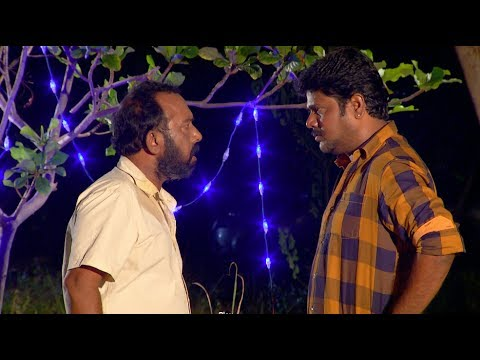 Priyamanaval Episode 748, 29/06/17