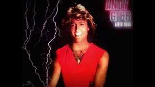 Watch Andy Gibb Dreamin On video