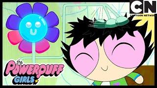Technology War | Powerpuff Girls | Cartoon Network