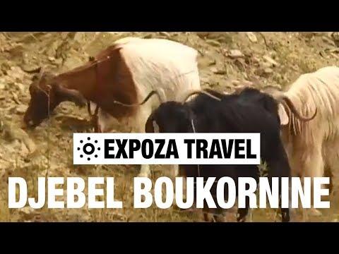 Djebel Boukornine (Tunisia) Vacation Travel Video Guide