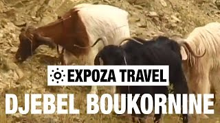 Djebel Boukornine (Tunisia) Vacation Travel Video Guide