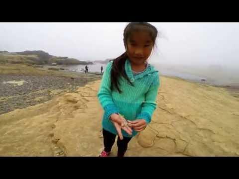 Point Lobos in Monterey Bay 2016