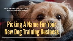 Picking A Name For Your New Dog Training Business