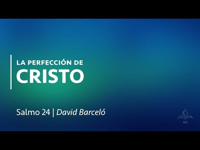La perfección de Cristo - David Barceló