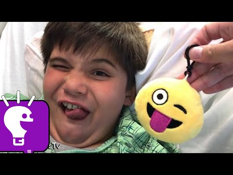 Batman and HobbyPig Find Surprises! McStuffins and Play-Doh Family Reviews
