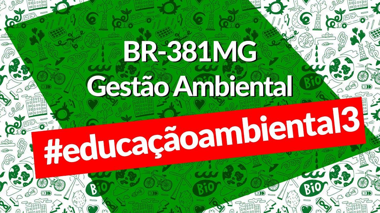 BR-381MG - Gestão Ambiental - Programa de Educação Ambiental - programa 3, Resgate de flora