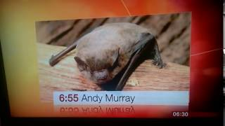BBC Breakfast reports on Sir Andy Murray's preparations for Wimbledon 2017