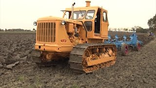 TraktorTV Folge 52 -Die  T100 mit dem Golzower Pflug