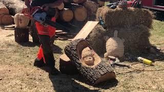 Video still for 2017 Sunbelt Ag Expo, Moultrie, GA – Husqvarna Chainsaw Sculpting