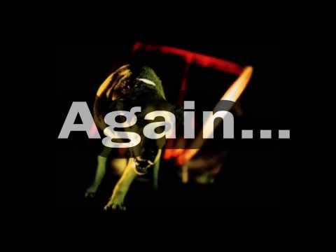 Alice in Chains - Again (Lyrics On Screen)