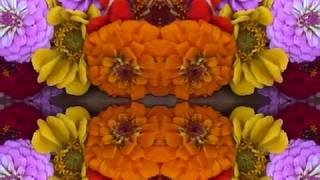 Video Willin' (by Linda Ronstadt live in Atlanta, 12-1-77) download MP3, 3GP, MP4, WEBM, AVI, FLV September 2018