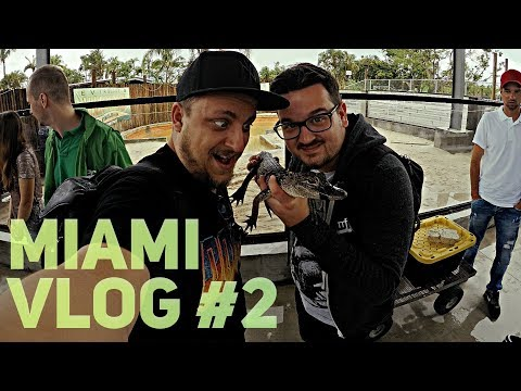 DEEP IN THE JUNGLE | Miami VLOG #2