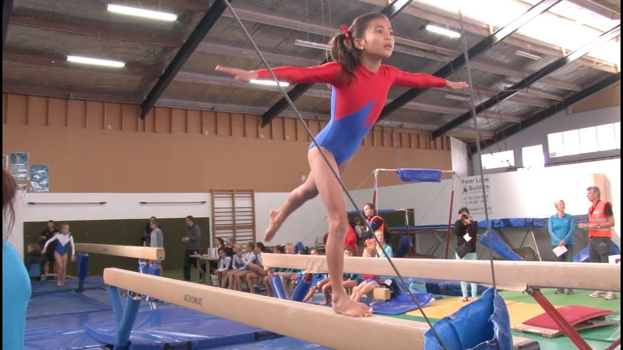 Image result for gymnastic festival