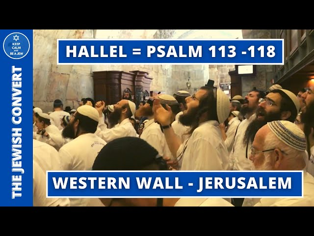Hallel at the Western Wall