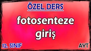 8) Fotosenteze Giriş - Özel Ders (12. Sınıf)