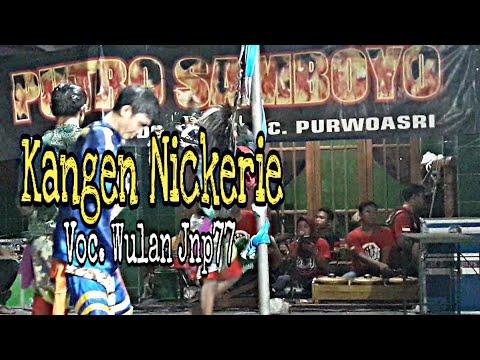 KANGEN NICKERIE Voc. Wulan Jnp77 Cover Panjak Ruwet   PUTRO SAMBOYO Live Sidokaton Kudu Jombang
