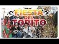 Video de Romita