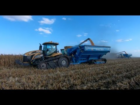 2017 Illinois Corn Harvest with two Claas Lexion 780 Combines